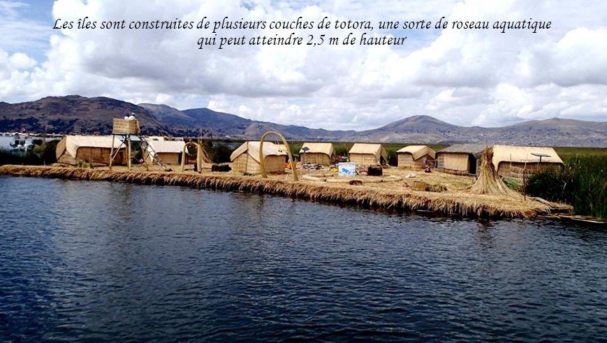 Les îles sont construites de plusieurs couches de totora, une sorte de roseau aquatique qui peut atteindre 2,5 m de hauteur