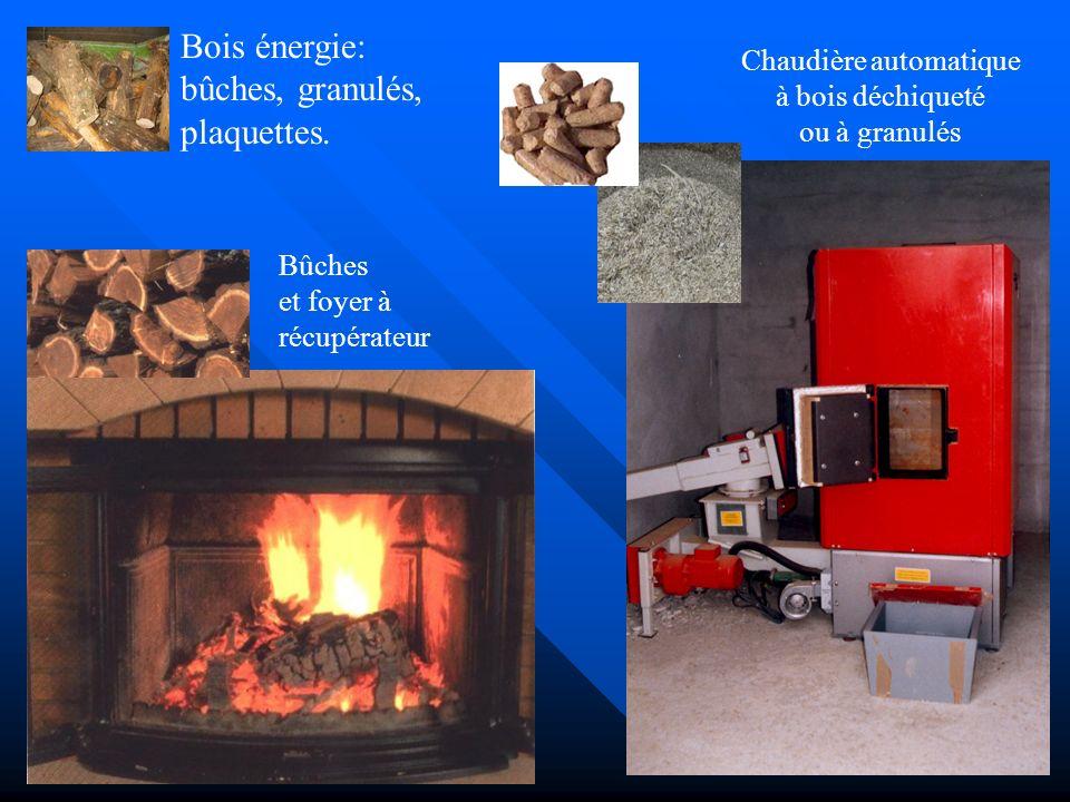 Biomasse: Gaz des décharges Huiles végétales Quelques infos et adresses