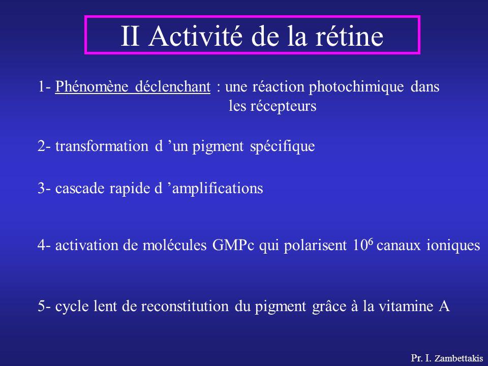 Pr. I. Zambettakis II Activité de la rétine 1- Phénomène déclenchant : une réaction photochimique dans les récepteurs 2- transformation d un pigment s