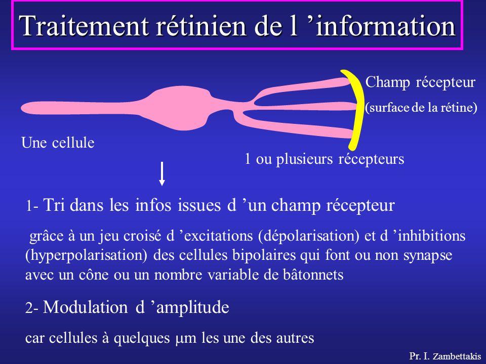 Pr. I. Zambettakis Traitement rétinien de l information Une cellule 1 ou plusieurs récepteurs Champ récepteur (surface de la rétine) 1- Tri dans les i