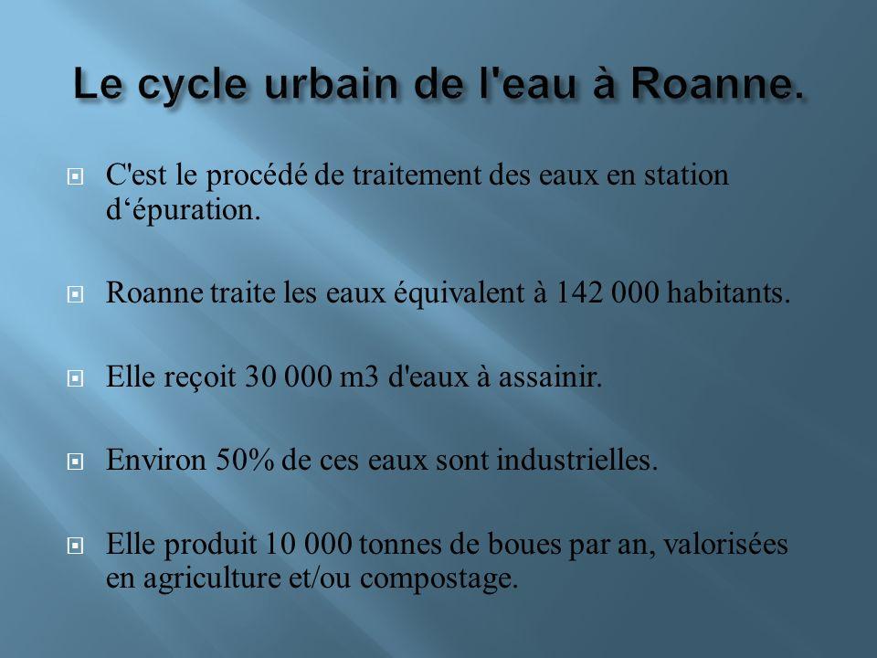 C'est le procédé de traitement des eaux en station dépuration. Roanne traite les eaux équivalent à 142 000 habitants. Elle reçoit 30 000 m3 d'eaux à a