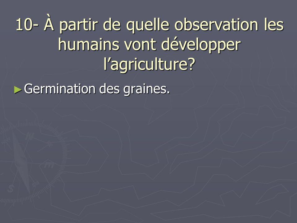 10- À partir de quelle observation les humains vont développer lagriculture? Germination des graines. Germination des graines.