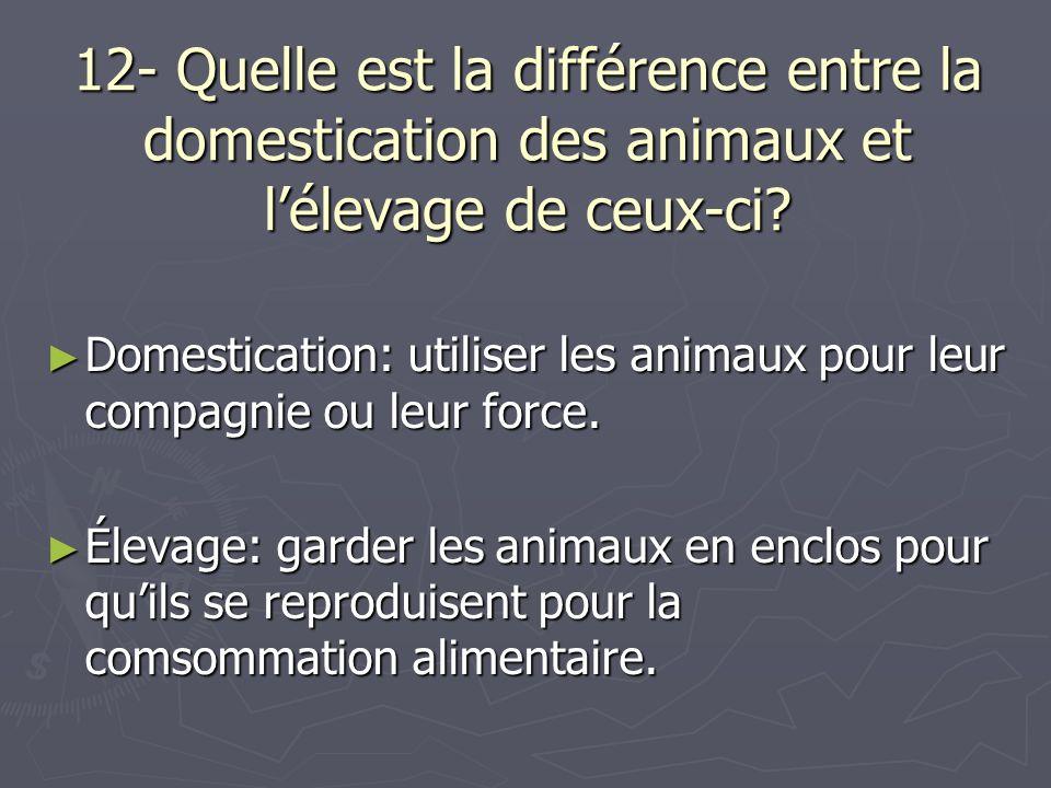 12- Quelle est la différence entre la domestication des animaux et lélevage de ceux-ci? Domestication: utiliser les animaux pour leur compagnie ou leu