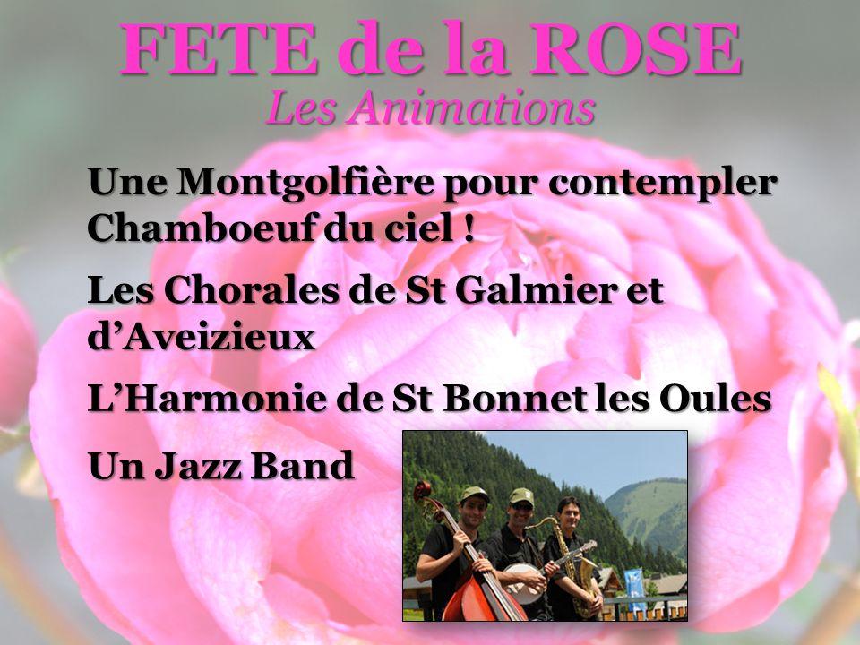 Les Animations FETE de la ROSE Une Montgolfière pour contempler Chamboeuf du ciel .