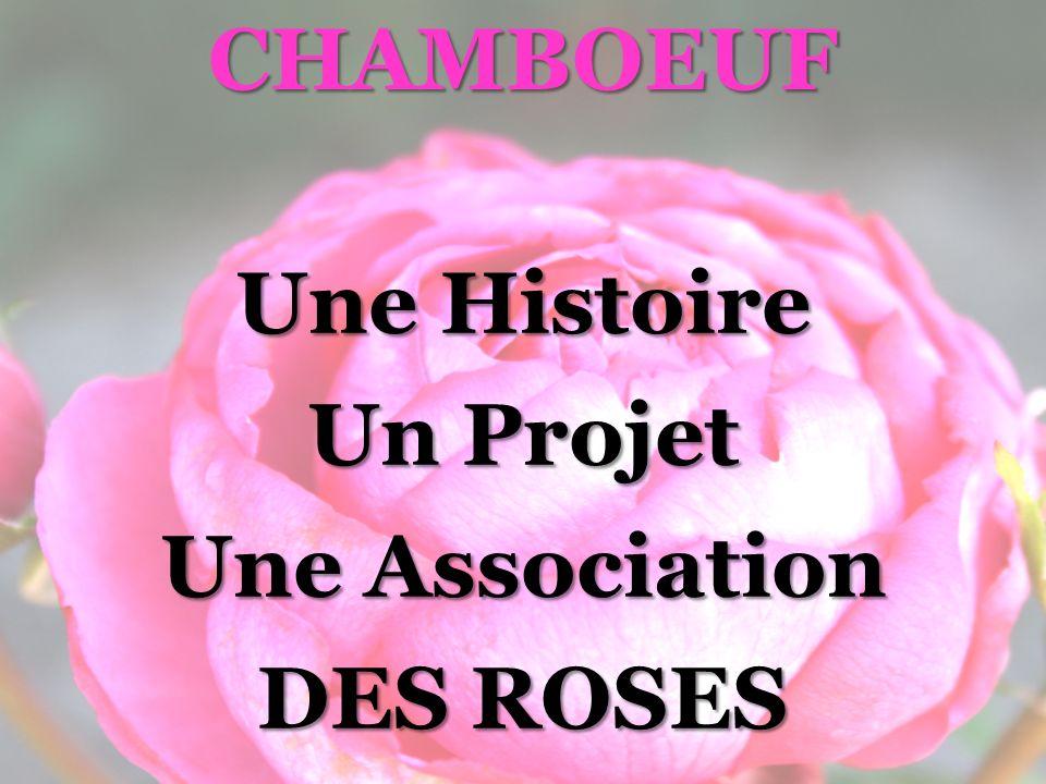 Photos : « Ceux de Chamboeuf » Concours Photos Les Expositions Photos : « Une Rose en Voyage » FETE de la ROSE