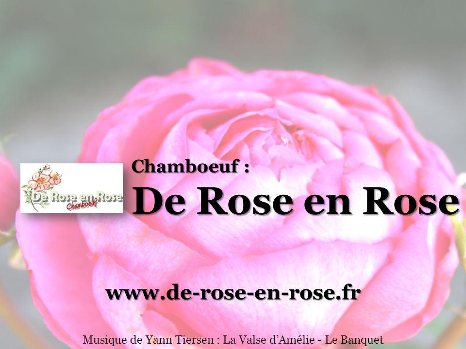 Chamboeuf : De Rose en Rose www.de-rose-en-rose.fr Musique de Yann Tiersen : La Valse dAmélie - Le Banquet