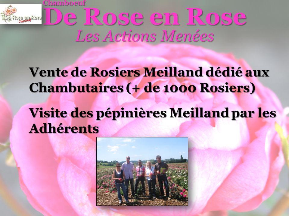 Conclusion Un projet très ambitieux Préambule au Congrès International des Sociétés de Roses à Lyon en 2015 600 Congressistes du monde entier à Chamboeuf !