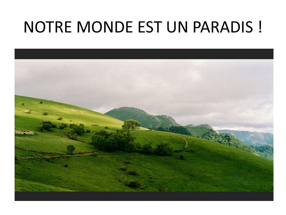 NOTRE MONDE EST UN PARADIS !