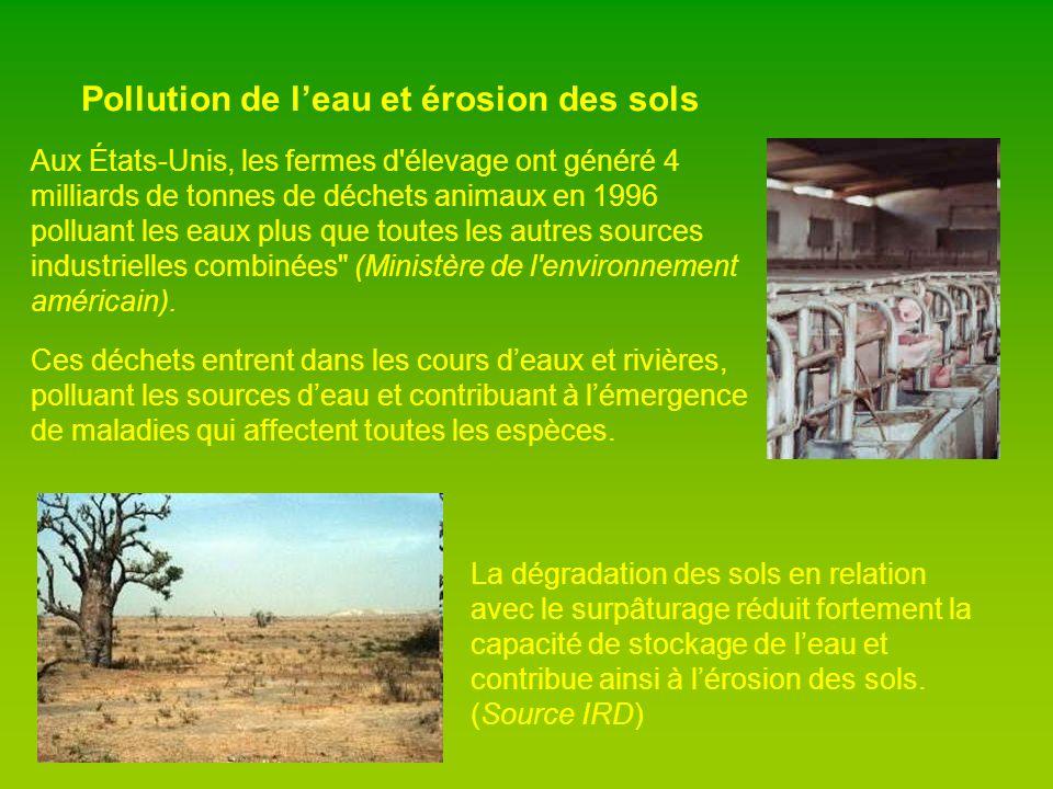 Déforestation Plus de 200 millions d hectares de forêts tropicales ont été détruites depuis 1950, notamment pour faire place à des pâturages ou des fermes de bovins.