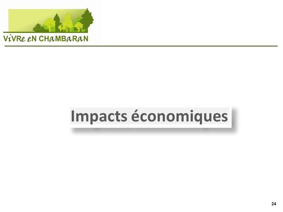 Impacts économiques 24