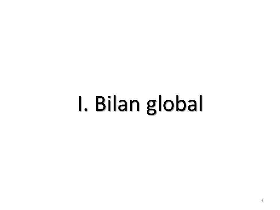 I. Bilan global 4