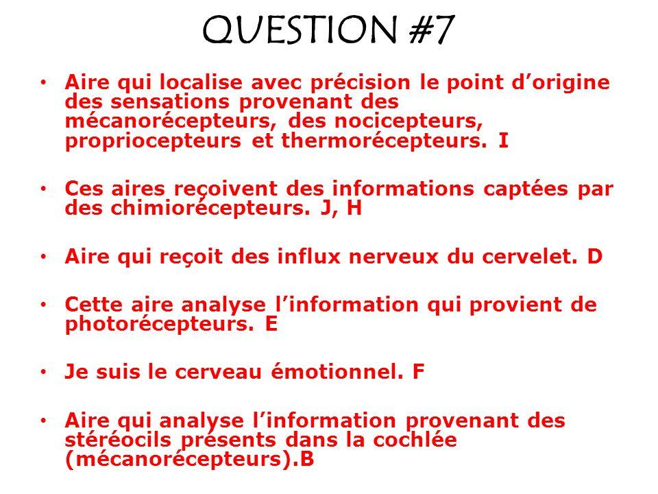 QUESTION #7 Aire qui localise avec précision le point dorigine des sensations provenant des mécanorécepteurs, des nocicepteurs, propriocepteurs et thermorécepteurs.