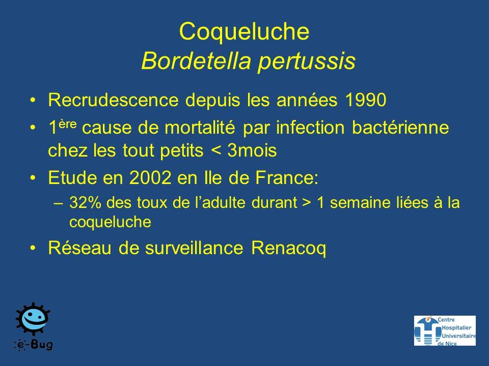 Coqueluche Bordetella pertussis Recrudescence depuis les années 1990 1 ère cause de mortalité par infection bactérienne chez les tout petits < 3mois Etude en 2002 en Ile de France: –32% des toux de ladulte durant > 1 semaine liées à la coqueluche Réseau de surveillance Renacoq