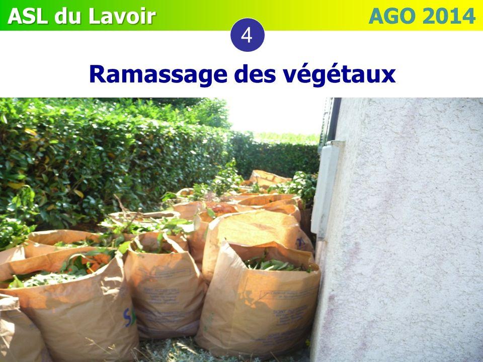 Ramassage des végétaux 4
