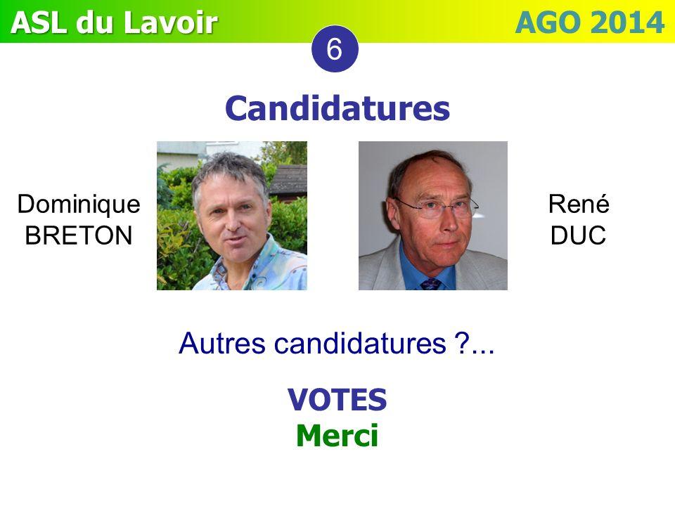 ASL du Lavoir ASL du Lavoir AGO 2014 Autres candidatures ?... VOTES Merci 6 Candidatures Dominique BRETON René DUC