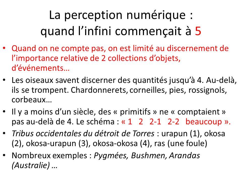 La perception numérique : quand linfini commençait à 5 Quand on ne compte pas, on est limité au discernement de limportance relative de 2 collections