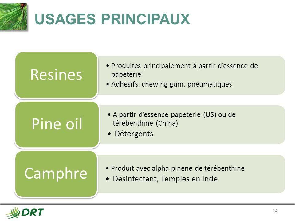 USAGES PRINCIPAUX 14 Produites principalement à partir dessence de papeterie Adhesifs, chewing gum, pneumatiques Resines A partir dessence papeterie (