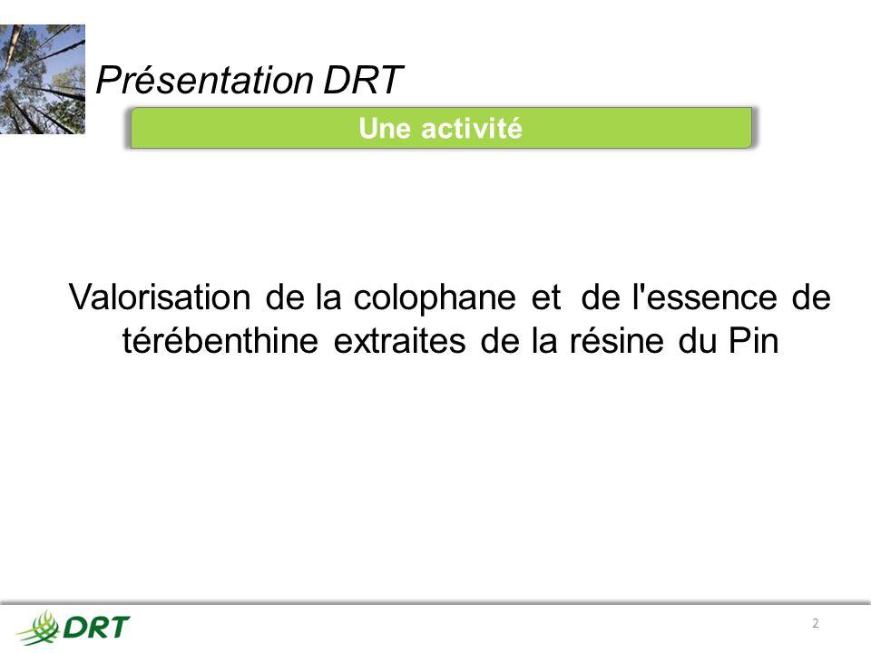 Présentation DRT Une activité 2 Valorisation de la colophane et de l'essence de térébenthine extraites de la résine du Pin