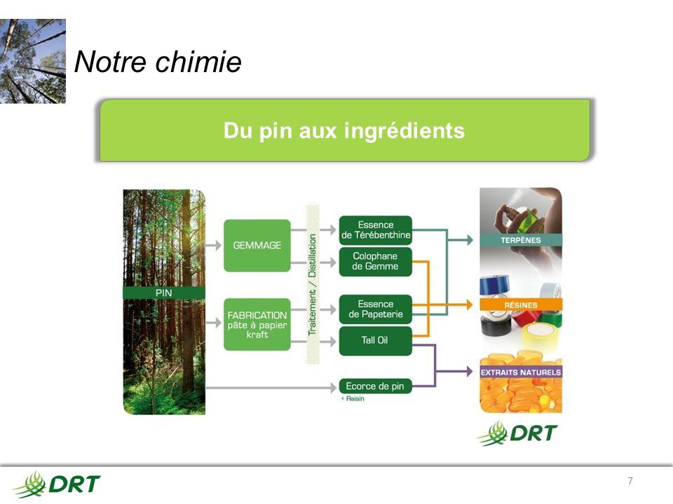 Notre chimie 7 Du pin aux ingrédients