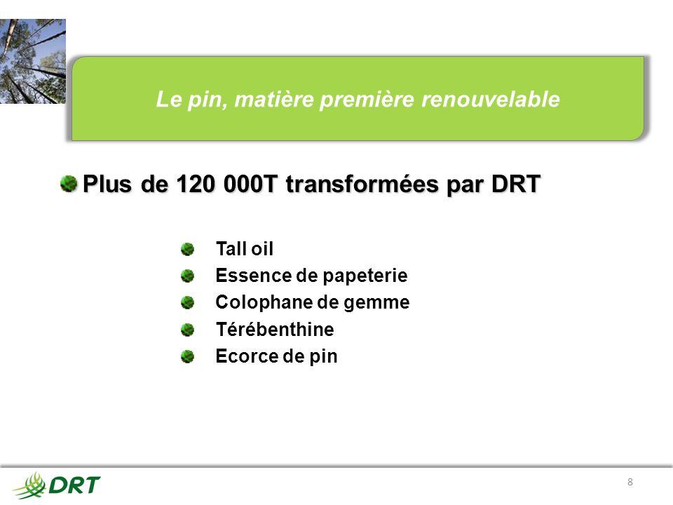8 Plus de 120 000T transformées par DRT Tall oil Essence de papeterie Colophane de gemme Térébenthine Ecorce de pin Le pin, matière première renouvela