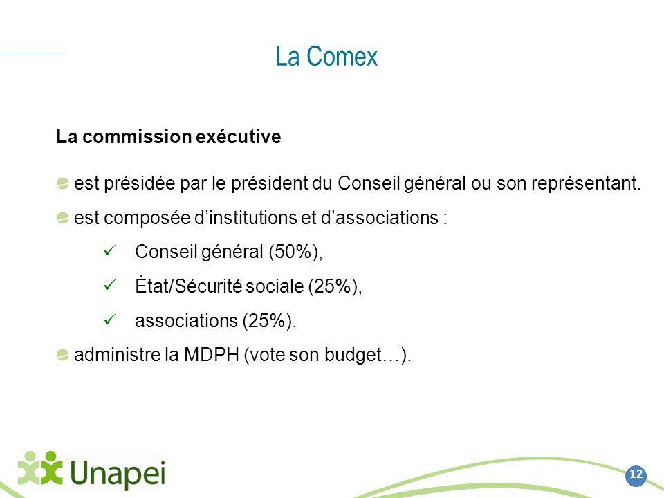 La Comex 12 La commission exécutive est présidée par le président du Conseil général ou son représentant. est composée dinstitutions et dassociations