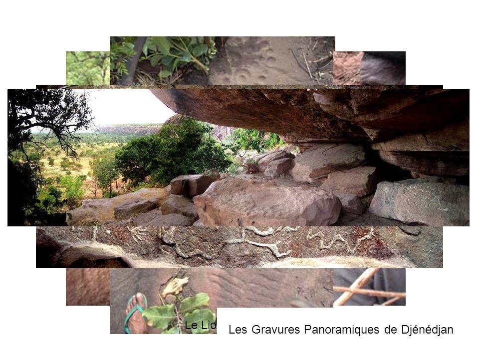 Gravure de lezard (Djenedjan) Crique des étranges traces (près de la crique de Pouanya) Caverne de Lancien village Gravure WempeaLe Lion de Kaderbougo