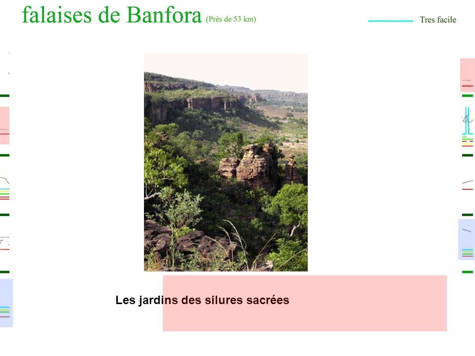 8 Superbes Randonnées ! La boucle de Toussiana Le sentier de la cité perdue Les Grandes Sauvages de Dramandougou La balade des 3 sources (5,2Km) Le se