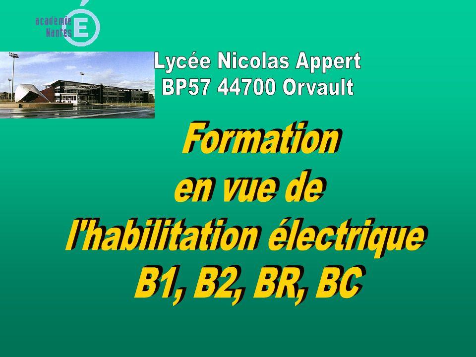 Les brûlures électrothermiques sont provoquées par lénergie dissipée par effet Joule tout le long du trajet du courant.