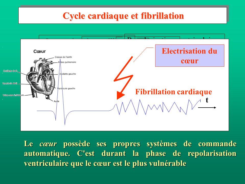 Cycle cardiaque et fibrillation Cycle cardiaque et fibrillation Le cœur possède ses propres systèmes de commande automatique. C'est durant la phase de