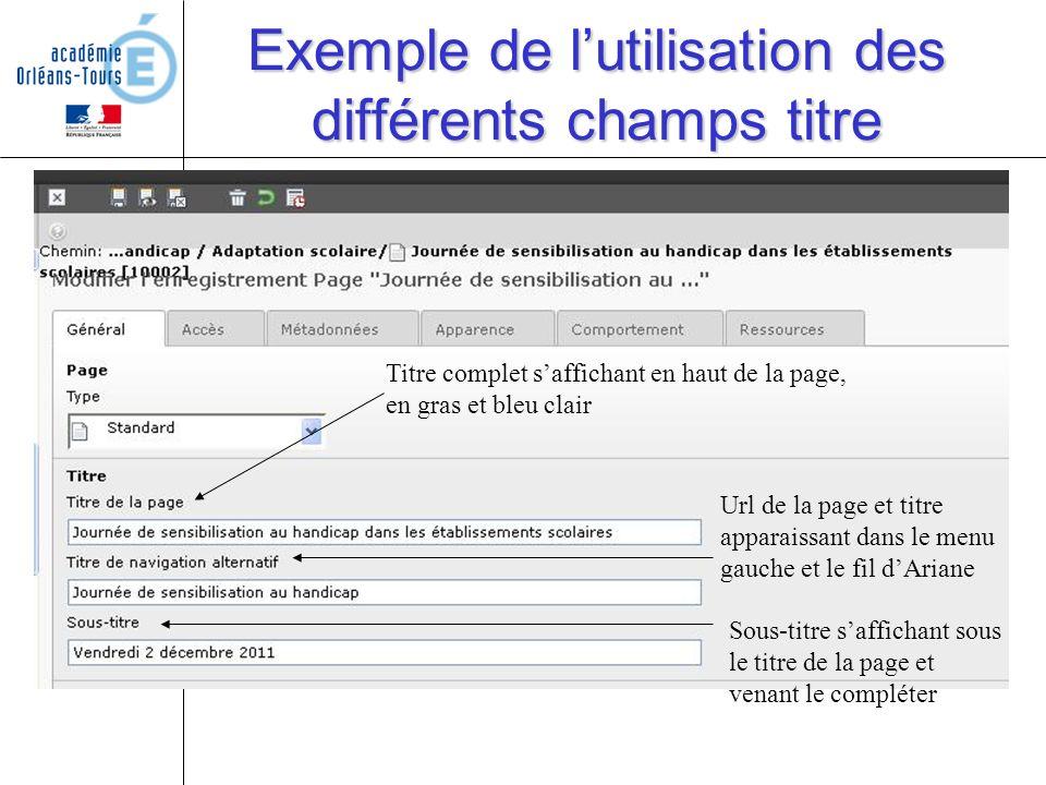 Exemple de lutilisation des différents champs titre Titre complet saffichant en haut de la page, en gras et bleu clair Url de la page et titre apparai