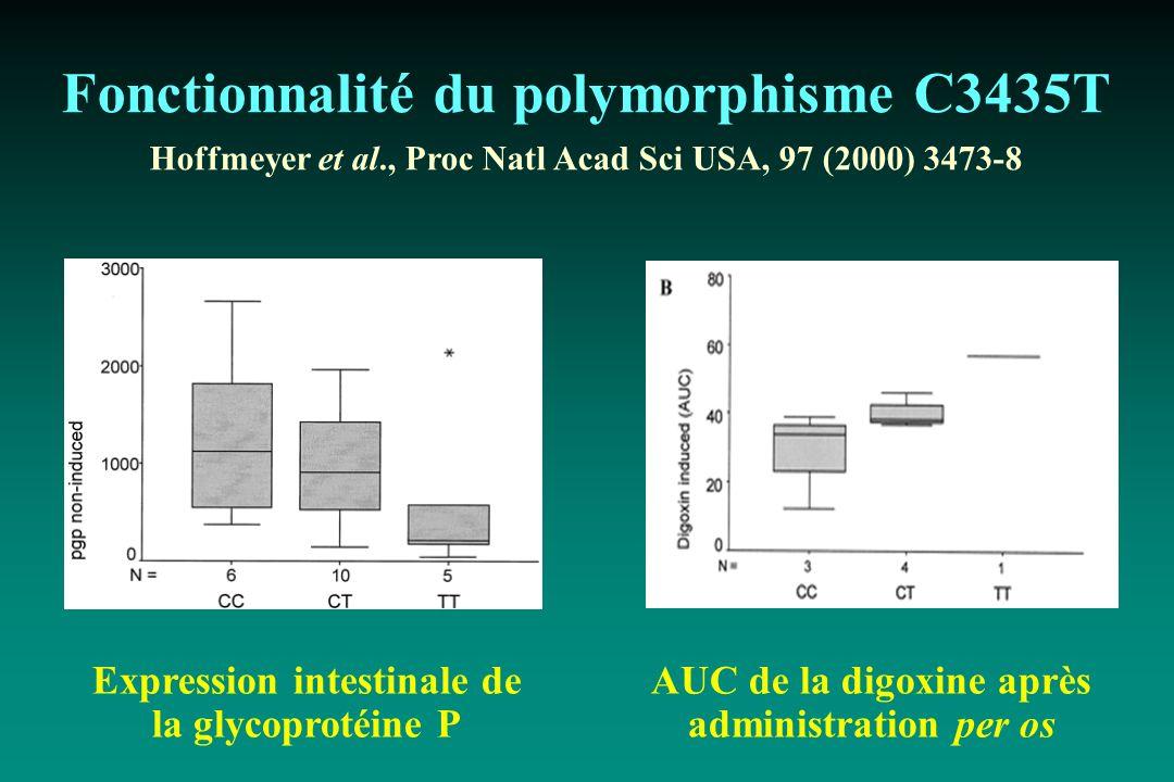 Fonctionnalité du polymorphisme C3435T Hoffmeyer et al., Proc Natl Acad Sci USA, 97 (2000) 3473-8 Expression intestinale de la glycoprotéine P AUC de