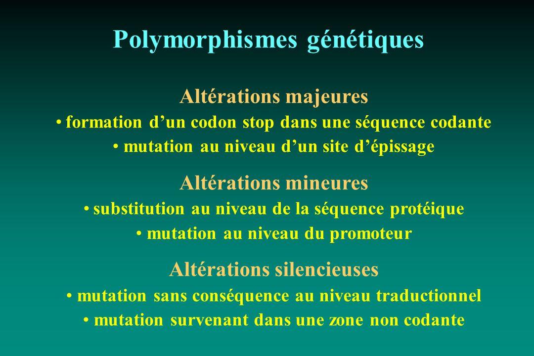 Polymorphismes génétiques Altérations majeures formation dun codon stop dans une séquence codante mutation au niveau dun site dépissage Altérations mi