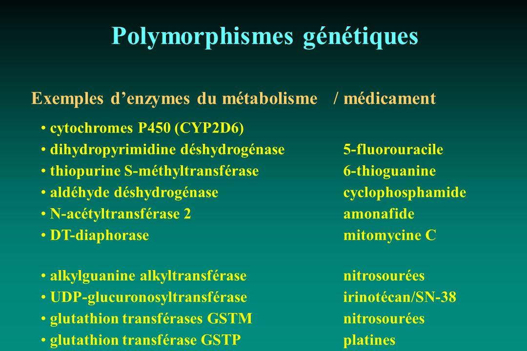 Polymorphismes génétiques Exemples denzymes du métabolisme /médicament cytochromes P450 (CYP2D6) dihydropyrimidine déshydrogénase 5-fluorouracile thio