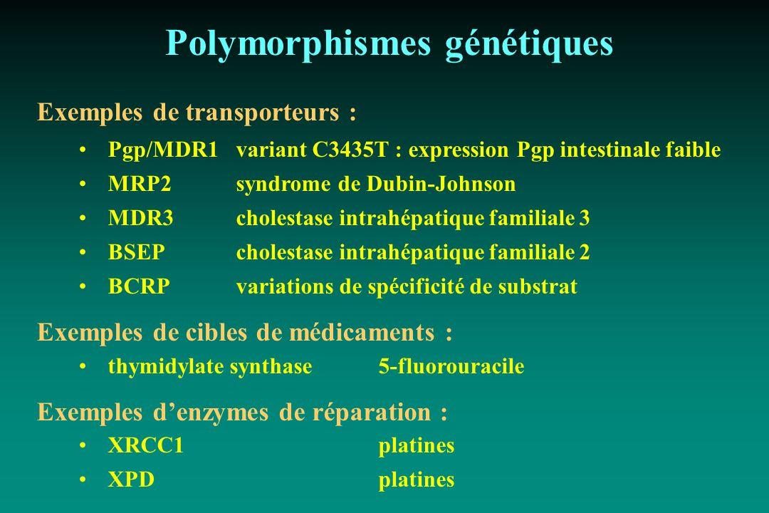 Polymorphismes génétiques Exemples de transporteurs : Pgp/MDR1variant C3435T : expression Pgp intestinale faible MRP2syndrome de Dubin-Johnson MDR3cho