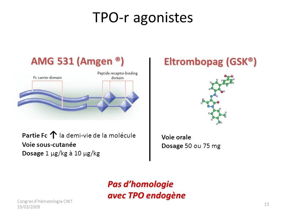 Congres dHématologie CNIT 19/03/2009 TPO-r agonistes AMG 531 (Amgen ®) Pas dhomologie avec TPO endogène Partie Fc la demi-vie de la molécule Voie sous