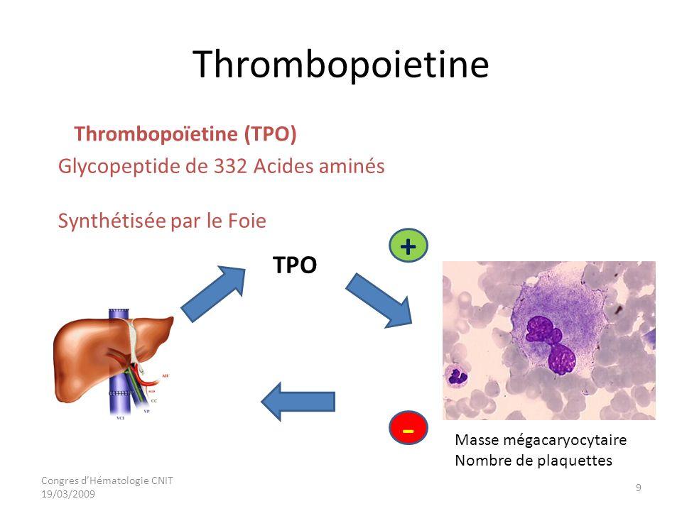 Congres dHématologie CNIT 19/03/2009 Thrombopoietine Glycopeptide de 332 Acides aminés Synthétisée par le Foie Thrombopoïetine (TPO) Masse mégacaryocy