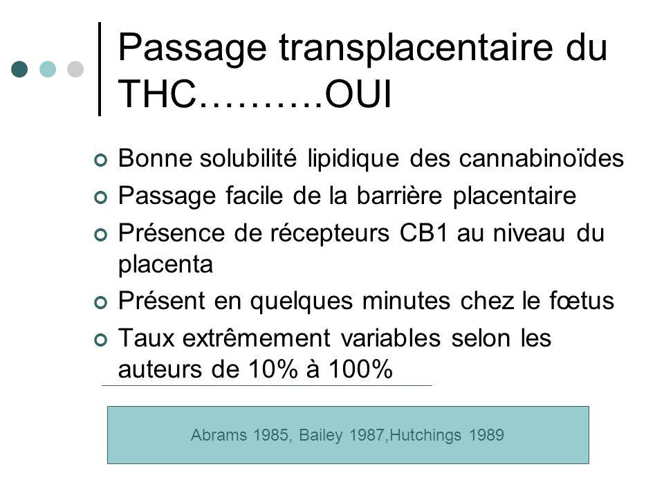 Passage transplacentaire du THC……….OUI Bonne solubilité lipidique des cannabinoïdes Passage facile de la barrière placentaire Présence de récepteurs C
