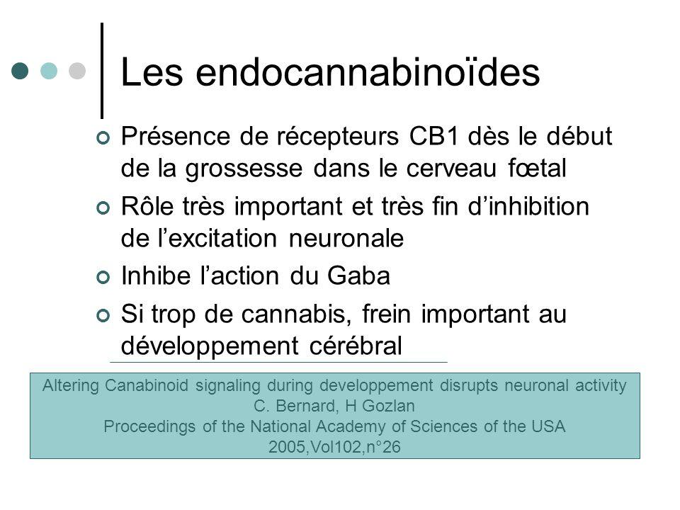 Les endocannabinoïdes Présence de récepteurs CB1 dès le début de la grossesse dans le cerveau fœtal Rôle très important et très fin dinhibition de lex