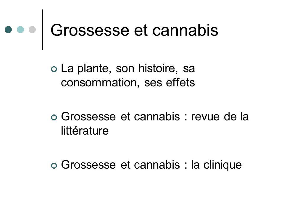 Grossesse et cannabis La plante, son histoire, sa consommation, ses effets Grossesse et cannabis : revue de la littérature Grossesse et cannabis : la