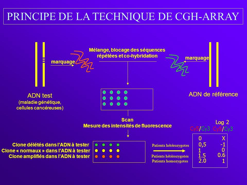 marquage Mélange, blocage des séquences répétées et co-hybridation Clone délétés dans lADN à tester Clone amplifiés dans lADN à tester Clone « normaux