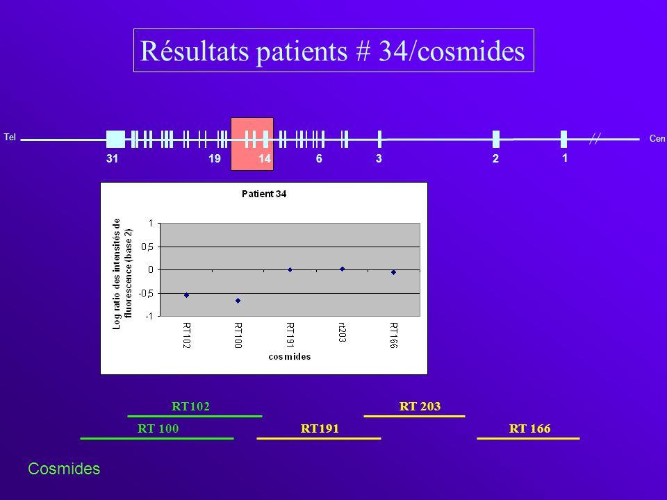 Cen 1 31 Tel 1914632 1a2 3a 3 3b 4567 8a 8b 8 8c 8d910 11a 11 11b 12a 12b 13 14 15b 15a 15 15c 1 Cen Gène CREBBP (16p13.3) responsable du syndrome de Rubinstein -Taybi Résultats patients 34/produits PCR