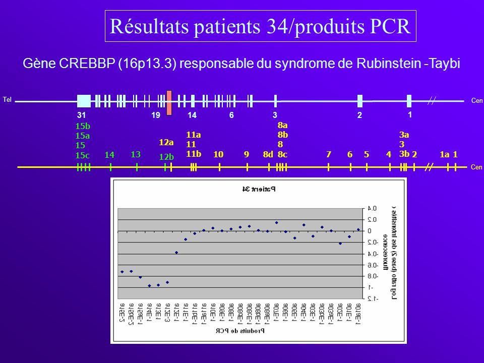 Cen 1 31 Tel 1914632 1a2 3a 3 3b 4567 8a 8b 8 8c 8d910 11a 11 11b 12a 12b 13 14 15b 15a 15 15c 1 Cen Gène CREBBP (16p13.3) responsable du syndrome de