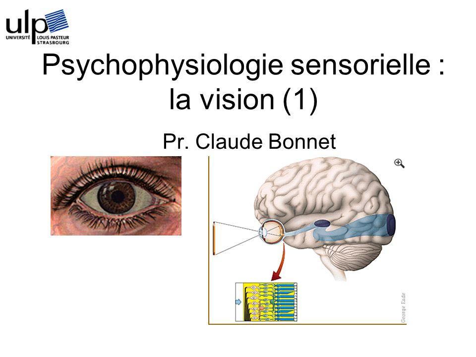 Objectifs du cours Détailler (schématiquement) léquipement biologique qui permet la vision humaine Montrer le lien entre des caractéristiques du système visuel et des phénomènes perceptifs Montrer que toute perception est une reconstruction qui dépend des propriétés du système visuel