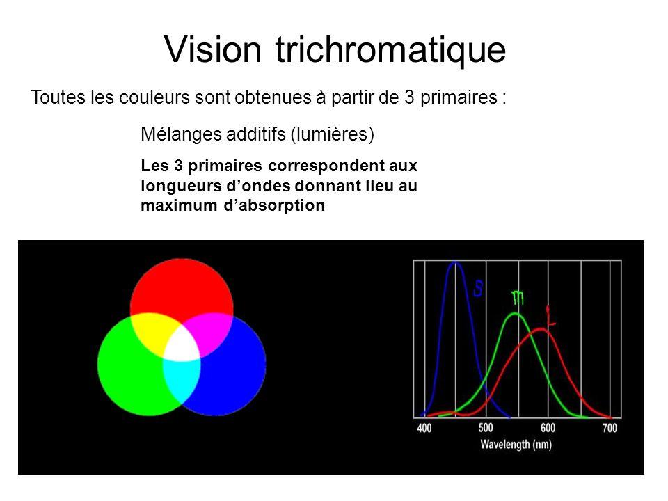 additif mélanges de couleur soustractif Vision trichromatique Toutes les couleurs sont obtenues à partir de 3 primaires : Mélanges additifs (lumières) Les 3 primaires correspondent aux longueurs dondes donnant lieu au maximum dabsorption Rouge Vert Bleu