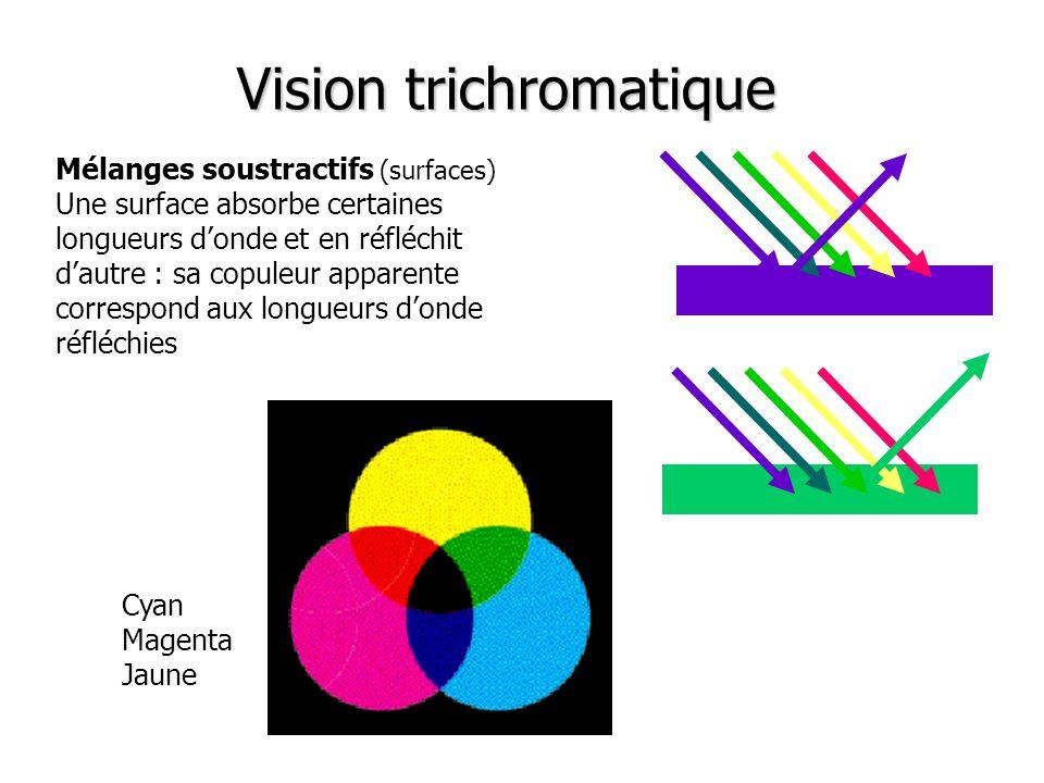 Mélanges soustractifs (surfaces) Une surface absorbe certaines longueurs donde et en réfléchit dautre : sa copuleur apparente correspond aux longueurs donde réfléchies Cyan Magenta Jaune Vision trichromatique