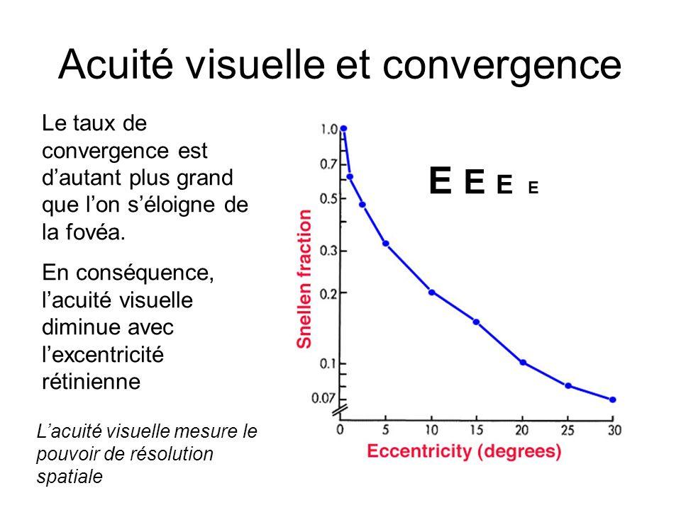 Acuité visuelle et convergence Le taux de convergence est dautant plus grand que lon séloigne de la fovéa. En conséquence, lacuité visuelle diminue av