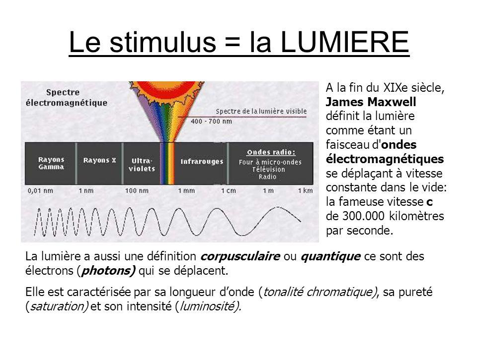 Le stimulus = la LUMIERE A la fin du XIXe siècle, James Maxwell définit la lumière comme étant un faisceau d ondes électromagnétiques se déplaçant à vitesse constante dans le vide: la fameuse vitesse c de 300.000 kilomètres par seconde.