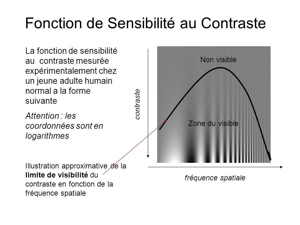 Fonction de Sensibilité au Contraste Illustration approximative de la limite de visibilité du contraste en fonction de la fréquence spatiale fréquence spatiale contraste La fonction de sensibilité au contraste mesurée expérimentalement chez un jeune adulte humain normal a la forme suivante Attention : les coordonnées sont en logarithmes Zone du visible Non visible