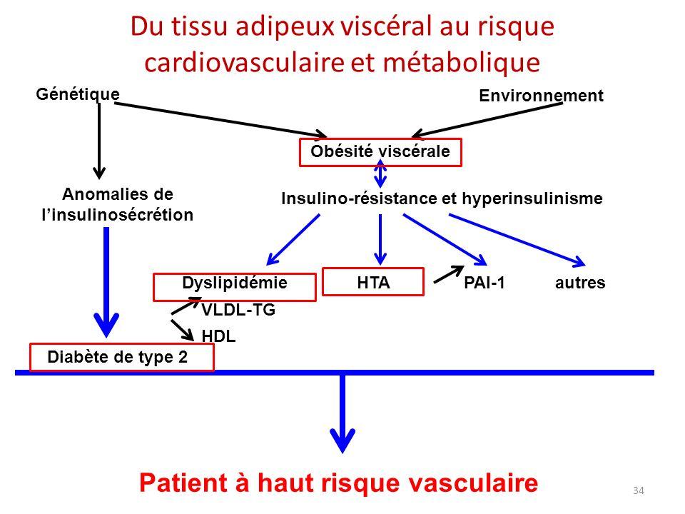 34 Du tissu adipeux viscéral au risque cardiovasculaire et métabolique Génétique Obésité viscérale Environnement Anomalies de linsulinosécrétion Insul