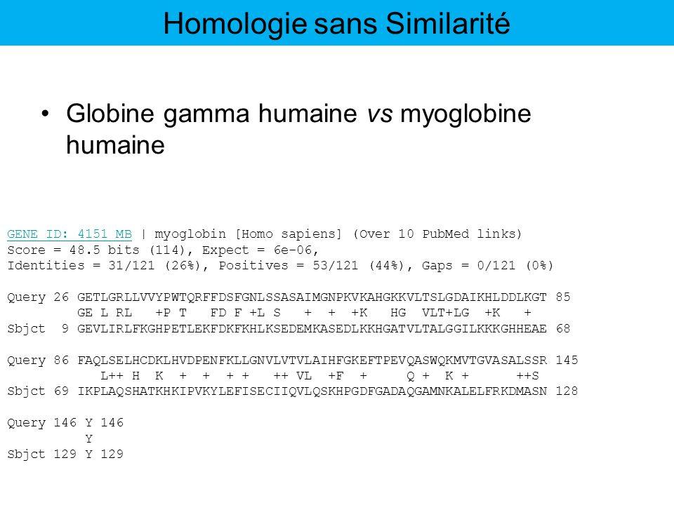 Globine gamma humaine vs myoglobine humaine GENE ID: 4151 MBGENE ID: 4151 MB | myoglobin [Homo sapiens] (Over 10 PubMed links) Score = 48.5 bits (114)